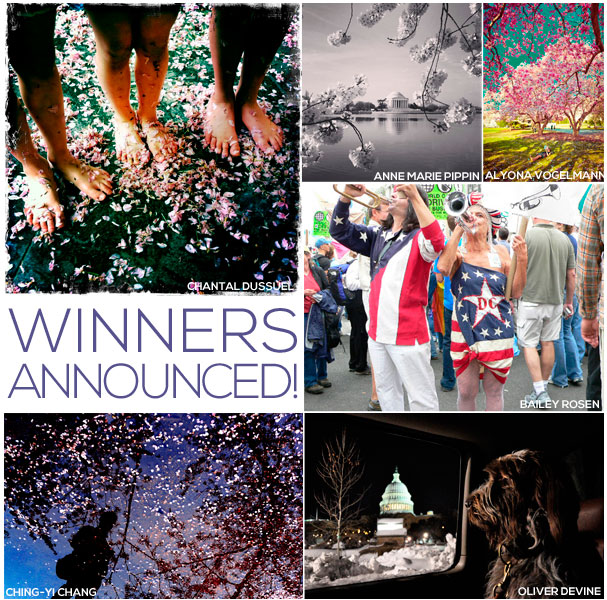 spring_in_focus_winner