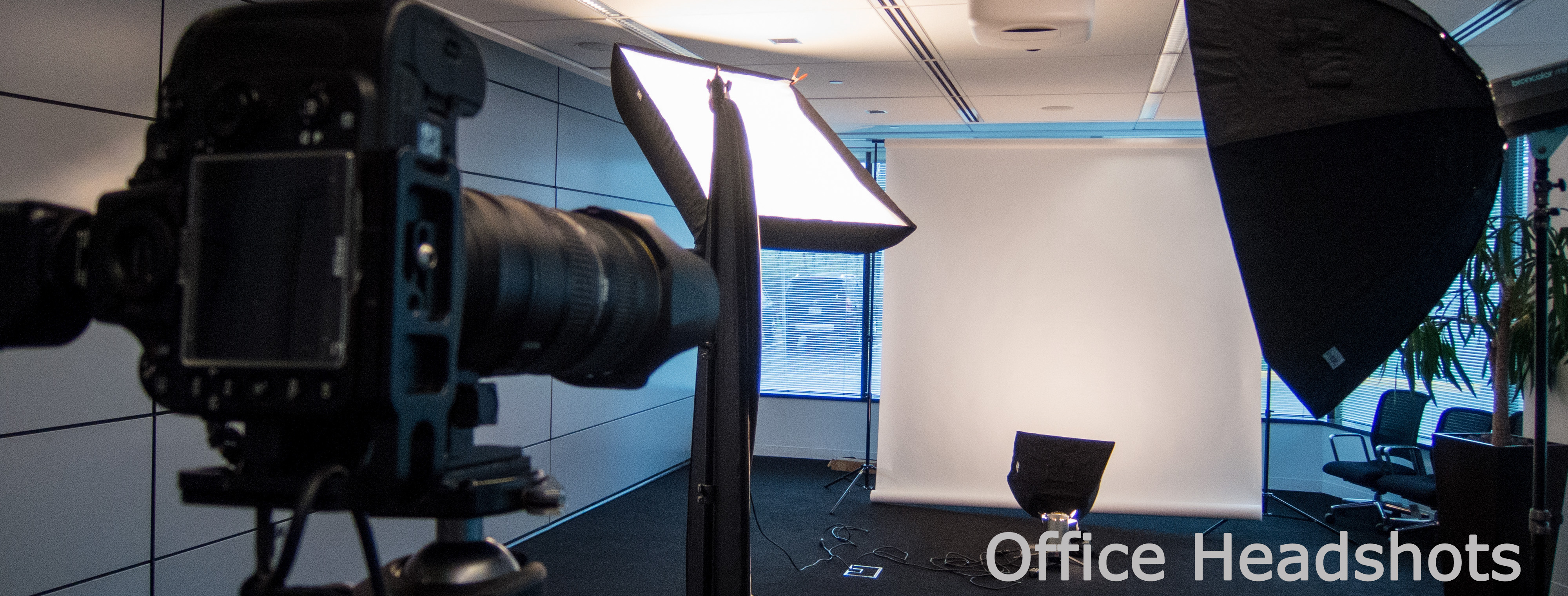 Office Headshots